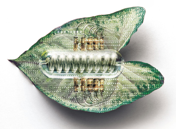 Artificial Leaf / Nature Magazine
