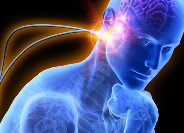 Thinker Cyber Anatomy
