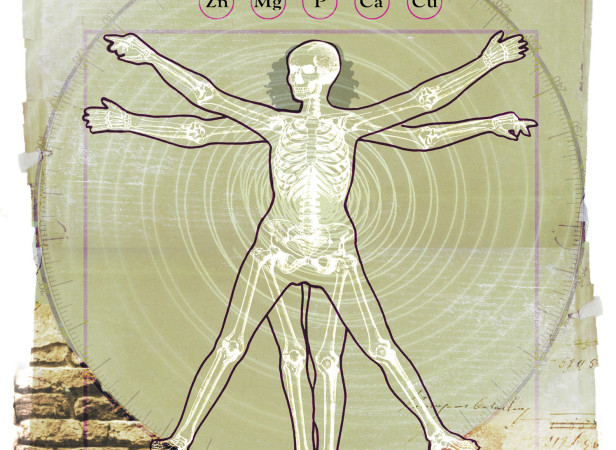 Ostopeorosis Skeleton Vitruvian Woman / Candis Magazine