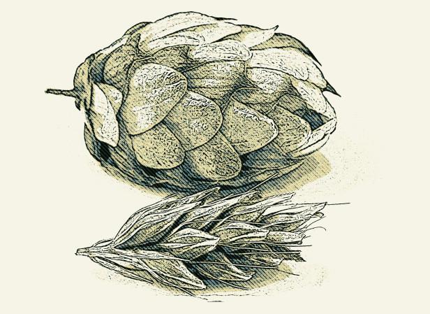 Food_House Hop _ Illustration.jpg
