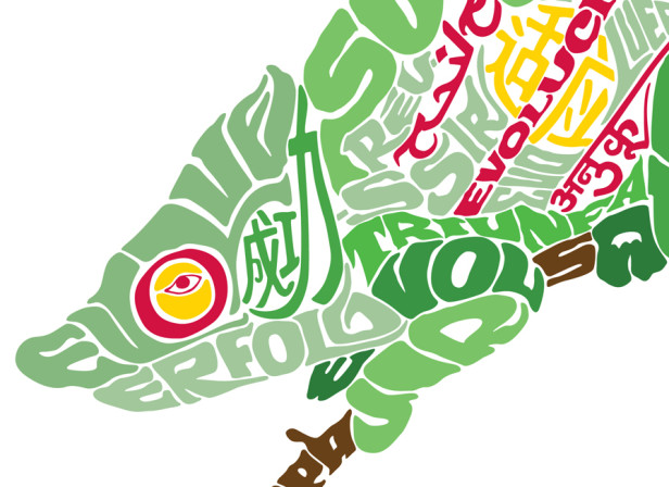 Futurestep Chameleon