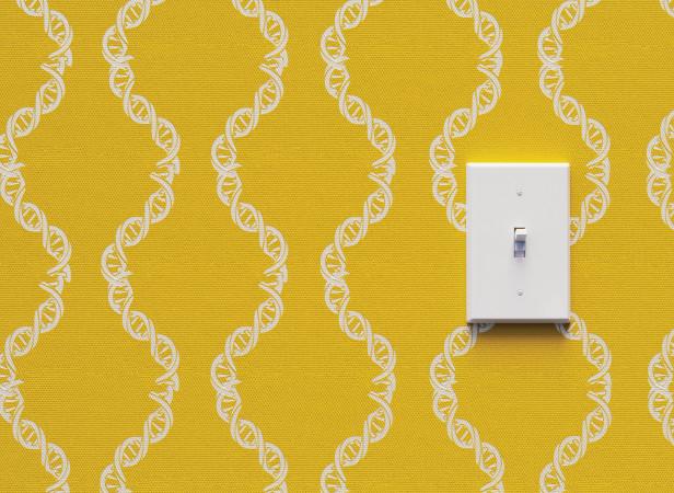 pcrowther_DNA wallpaper_CMYK.jpg