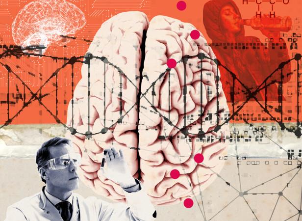 Hanson - Discover Magazine - Genes of Addiction-P3 HRF.jpg