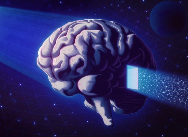 Sam Chivers-Spectrum-Far-side-of-the-brain.jpg