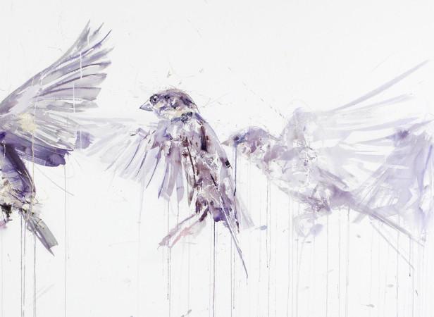 Sparrow Movement