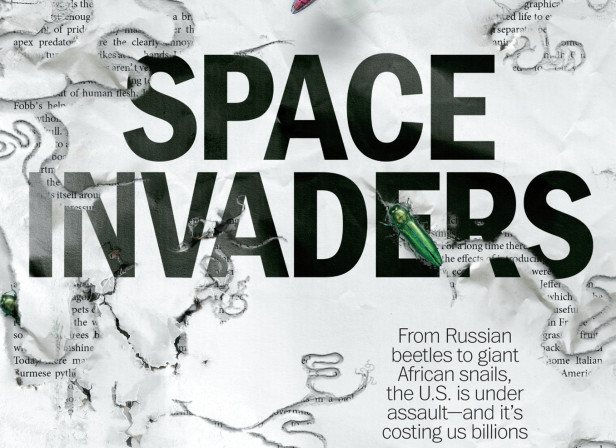 Space Invaders / Time Magazine