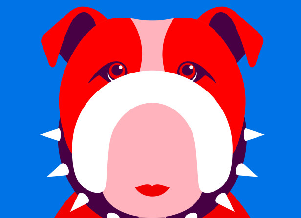 british-bulldog.jpg