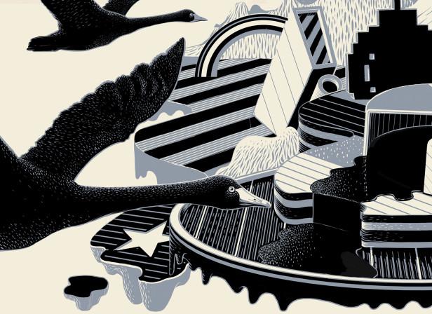 Black Swan / Economia Magazine