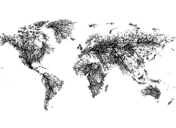 Fragile World.jpg