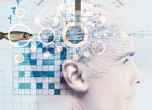 Memory Science Smart Money Magazine