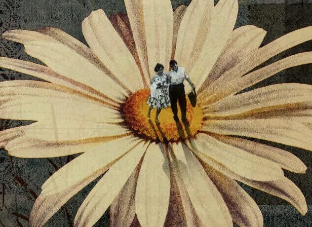 Martin_ONeill_Collage_illustration_Original_©_Artwork_Illustrator Floral FLower.jpg