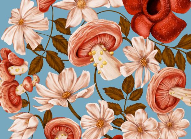 Kthompson_mushroom brollyblue.jpg