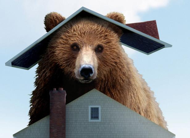 Bear Market House Money Mag