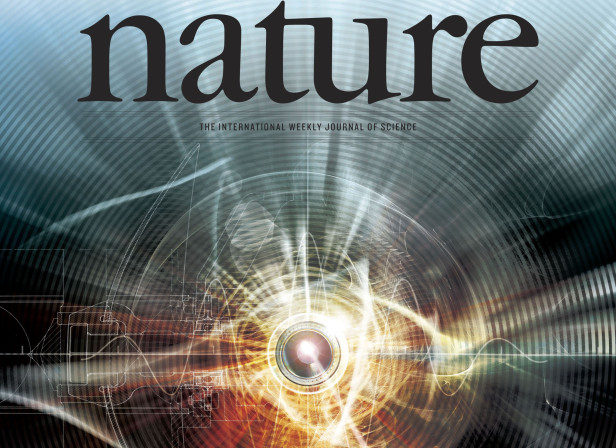Year of Light Cover Nature