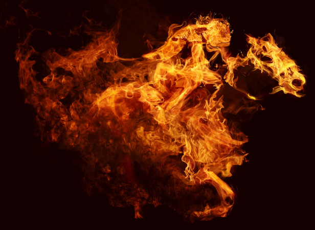 Horse Of Flames
