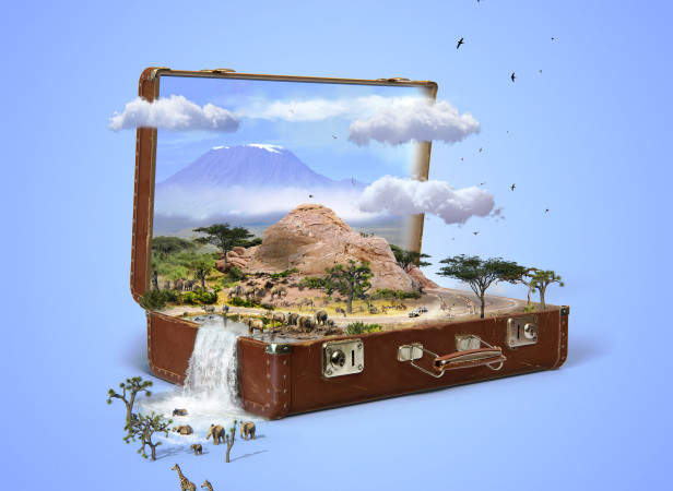 pcrowther_suitcase_COSMOPOLITAN.jpg
