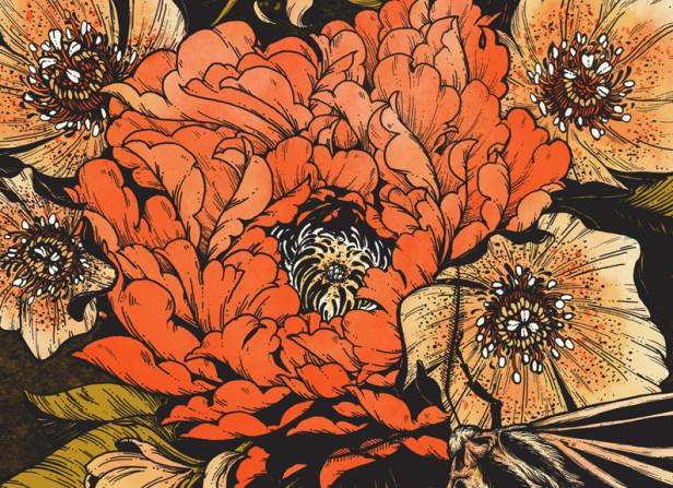 Ray LaMontagne - Bloom Lepis Art Print - Erica Williams.jpg