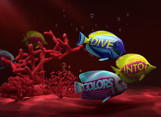 Dive Into Colours / EIZO