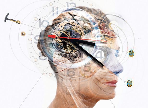 Chronobiology Brain.jpg
