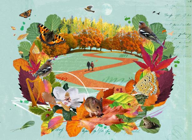 sarah-hanson-woodland-quest-for-quietness-financial-times.jpg
