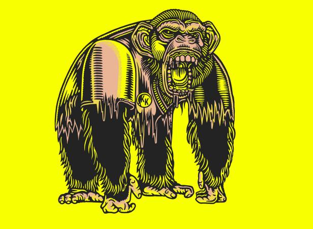 1_gorilla.jpg