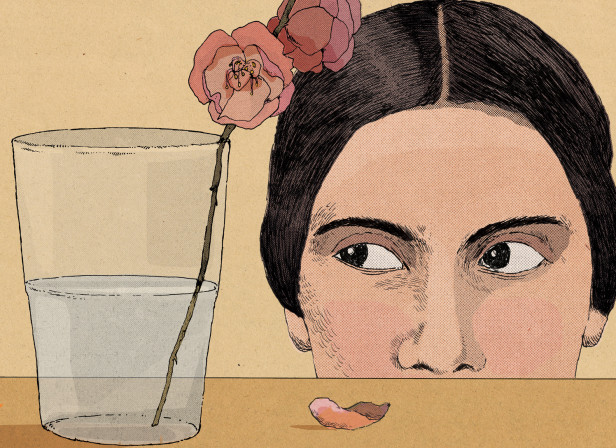 Emily Dickinson / The Telegraph