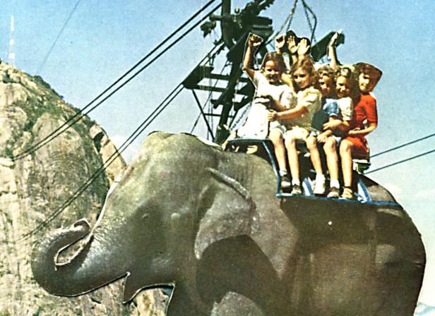 Elephant Cablecar Children Collage