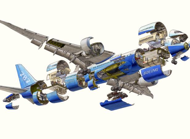Boeing 787 Cutaway