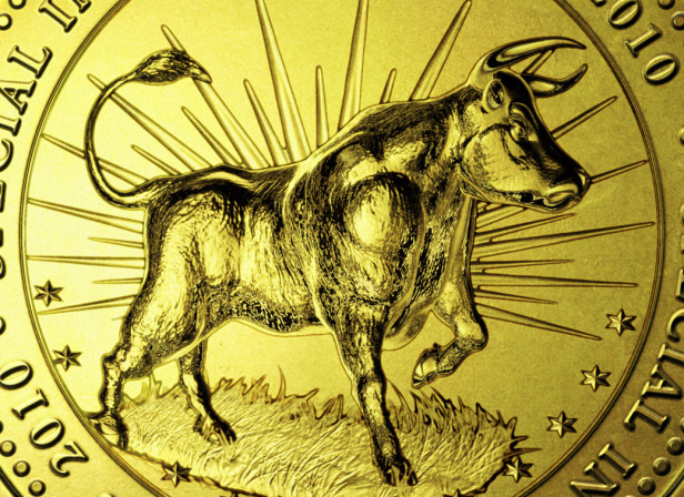 Gold Coin Bull Market Special Investing Issue