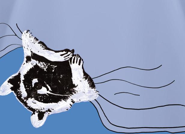 Arla Raccoon
