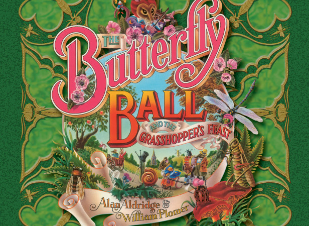 Butterfly Ball Cover