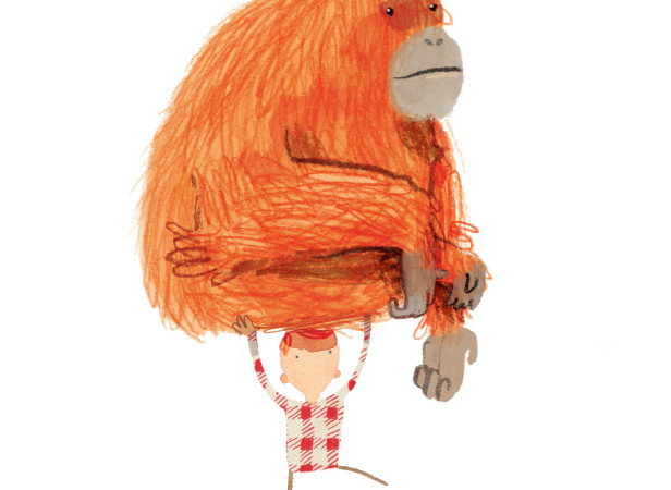 Stuck Orangutan