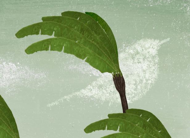 Illustrated poetry 10.jpg