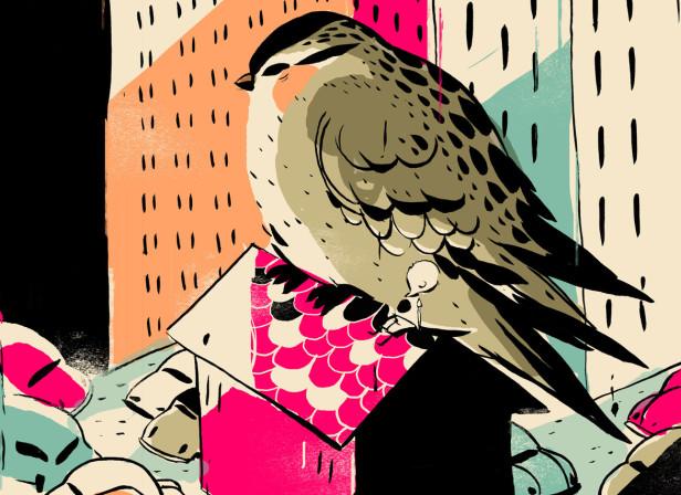 GIANTS! Bird