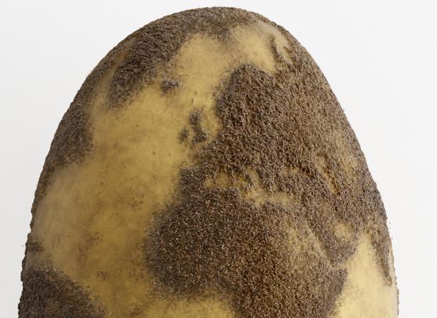 Love Food Hate Waste / Potato Globe