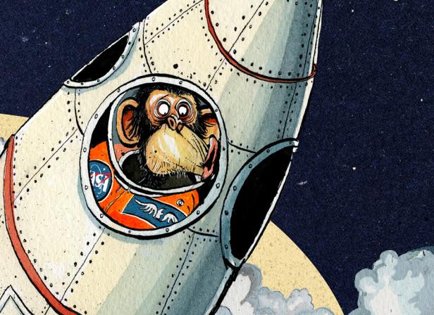 T3 Space Monkey
