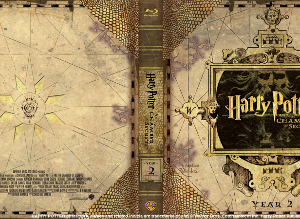 Harry Potter And The Chamber Of Secrets Year 2