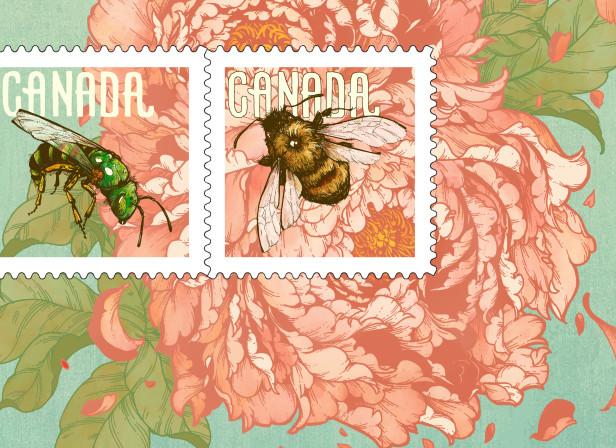 Candian Bee Postage Erica Williams.jpg