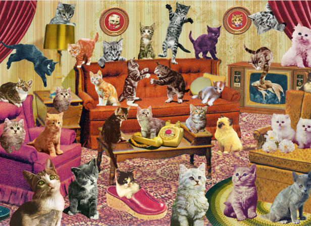 Count my Kittys / Frobisher Says Game / SONY PSvita