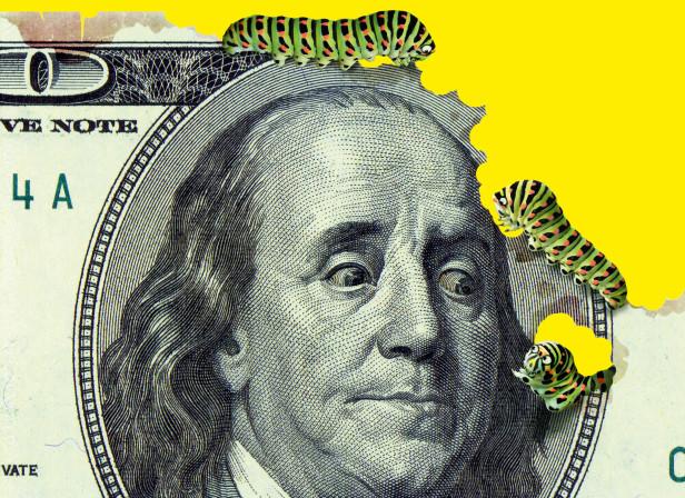 InflationCaterpillars.jpg