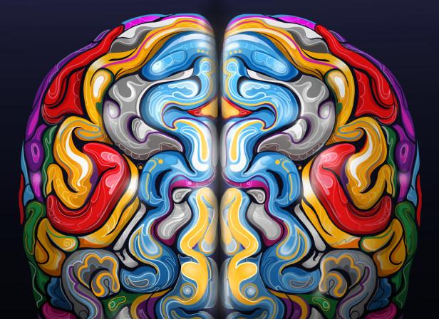NatureOutlook-The Brain.jpg