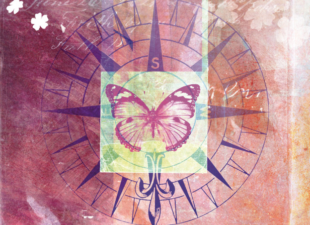 Butterfly Love Emotional and Spiritual Journey
